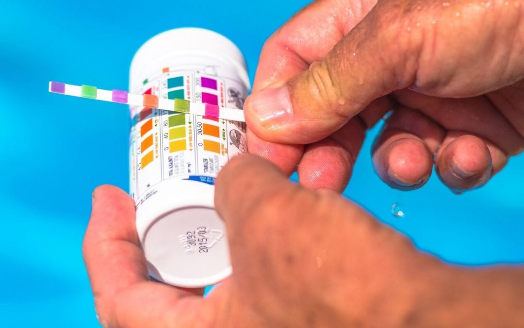 swimming pool maintenance involves testing the water