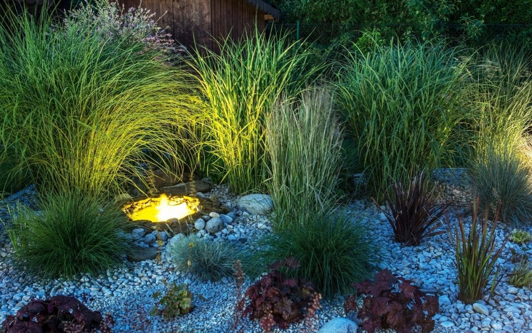 summertime projects for your home include adding landscape lighting